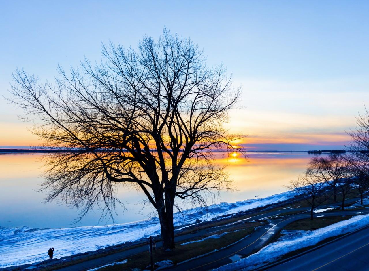 Sur les bords du Lac St Louis