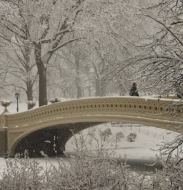 Central Park à New York sous la neige