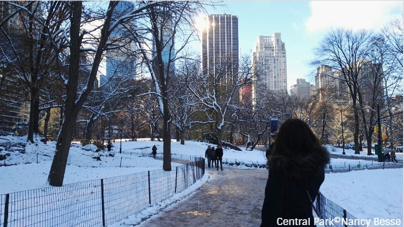 Dans le parc de Central Park à New York
