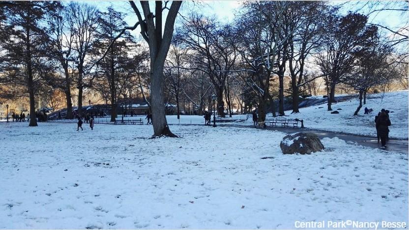 Dans le parc enneigé de Central Park à New York