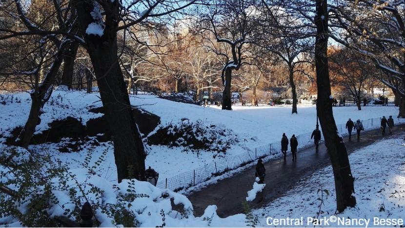 Se balader dans un Central Park enneigé à New York