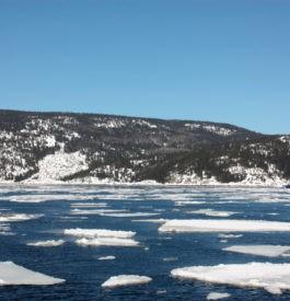 Scène hivernale par excellence à Tadoussac au Canada