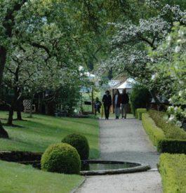 Faire le plein de nature aux jardins d'Aywiers, en Belgique