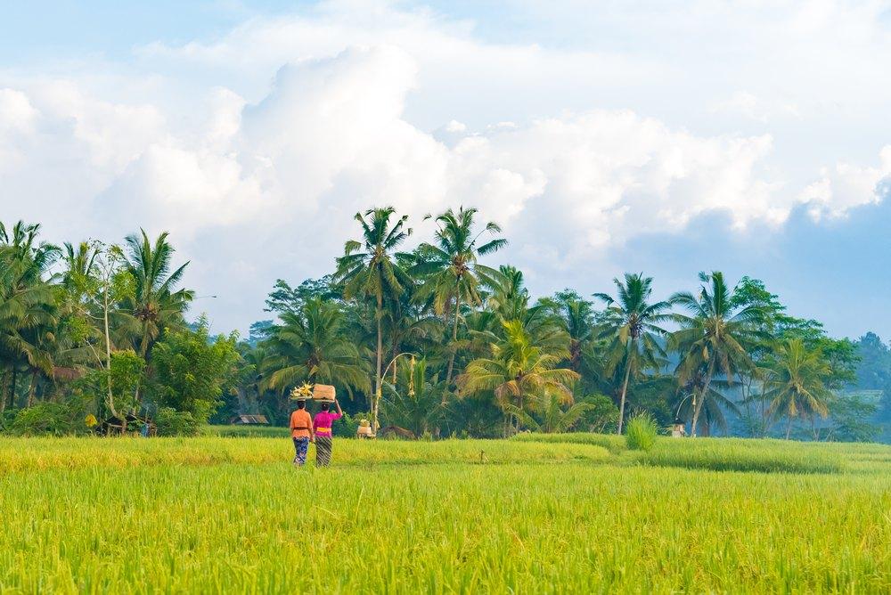 Un Voyage à Bali, ça Ne Su0027oublie Pas !