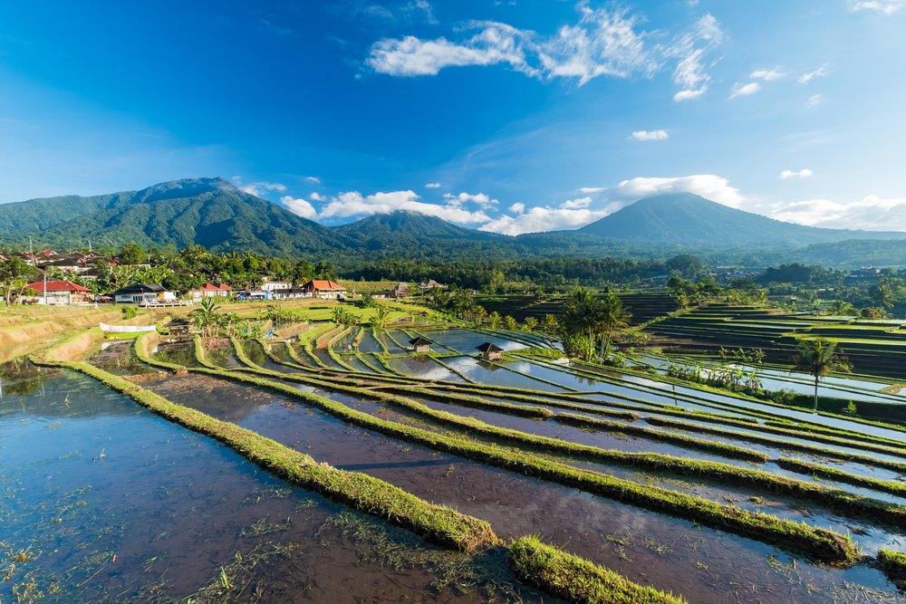 Découvrir Bali avec Asia
