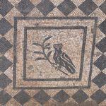 Découverte de la Domus du Commandant, à Rome
