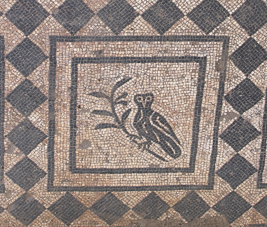 La mosaïque du Domus di Commandante à Rome