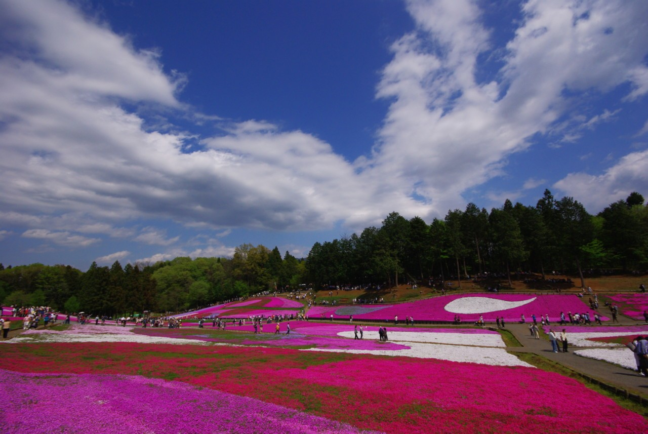 L'esthétisme japonaise dans toute sa maitrise à Chichibu, au Japon Photographies ©Yasufumi Nishi/©JNTO