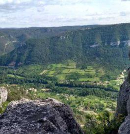Découvrir le luxe du Gite le Dandelion en Aveyron