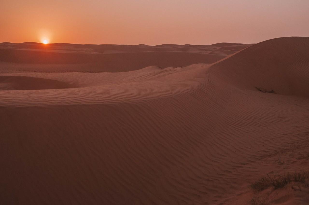 Au lever du soleil dans le désert de Wahiba