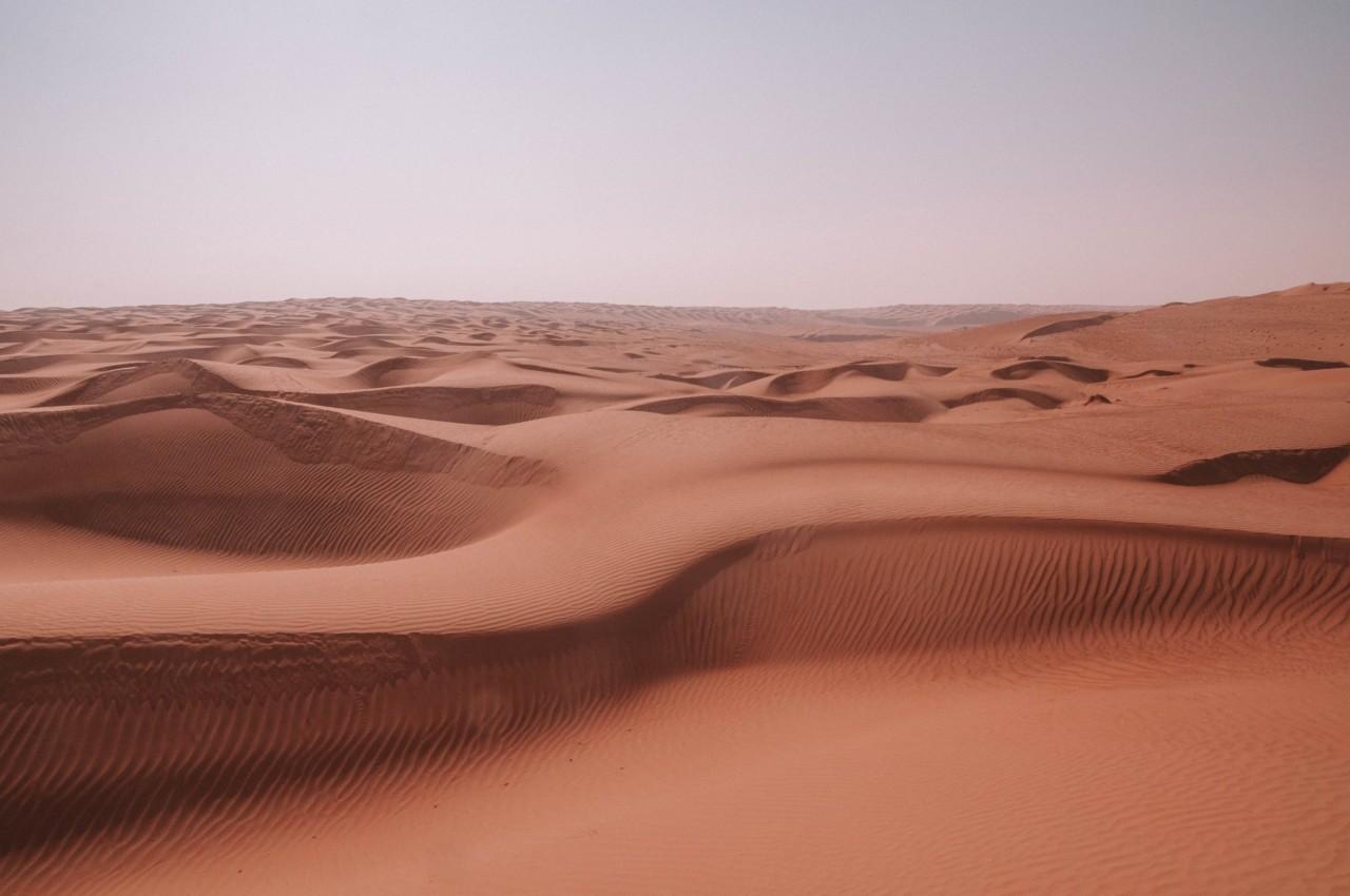 Découvrir le Désert de sable Wahiba à Oman