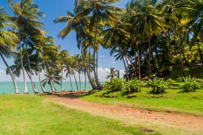 Flâner sur l'Ile Royale en Guyane