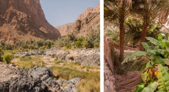 Sur la route du wadi Tiwi