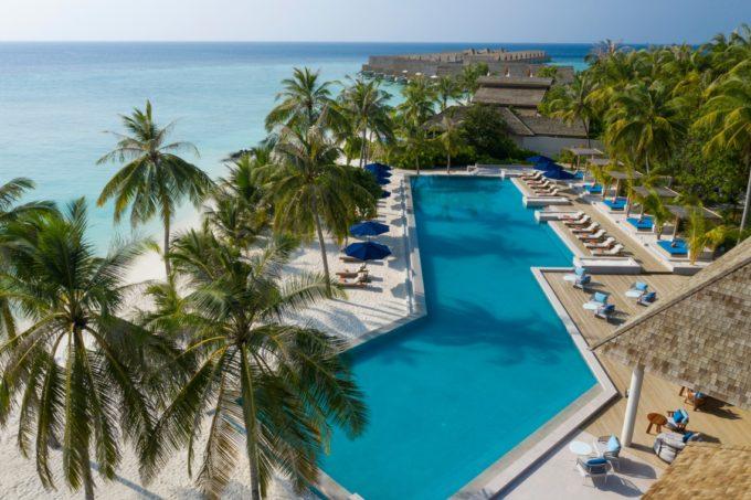Palmiers et piscine