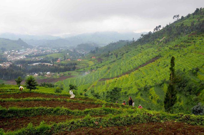 Dans la campagne de Kigali