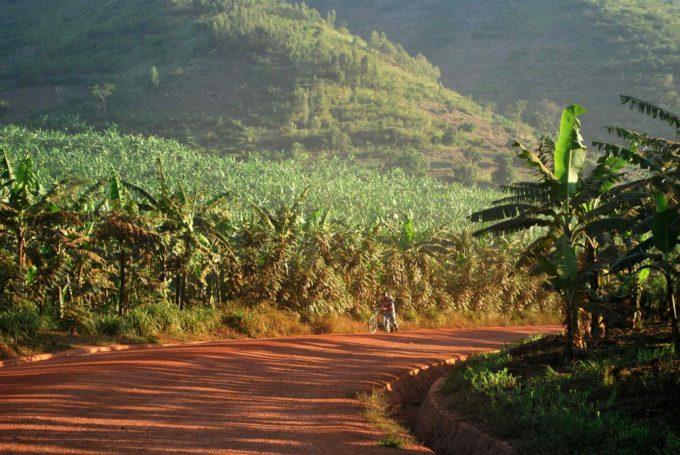 Sur la route vers l'hôtel