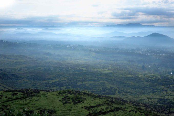 Vue incroyable sur la flore du Rwanda