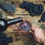 La route des vins dans le Bordelais