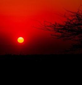 Consulter des infos pratiques pour un roadtrip en Namibie