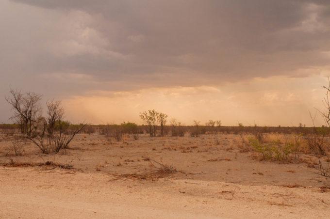 Paysage désertique de la Namibie