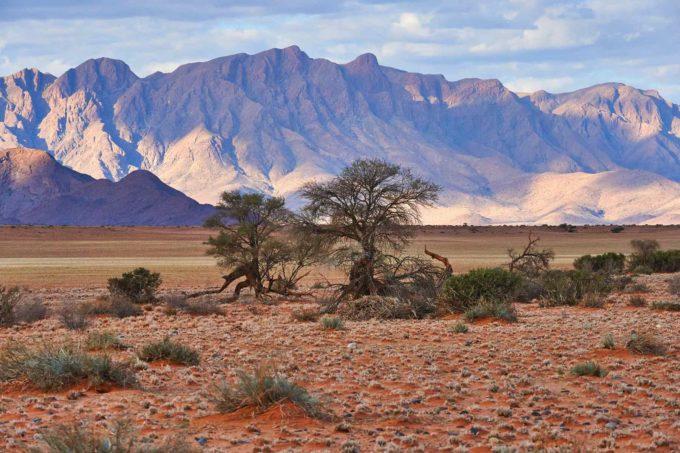Paysages grandioses en Namibie