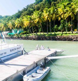 S'approcher de la Guyane
