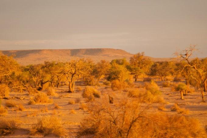 La vue depuis notre écolodge est absolument grandiose !