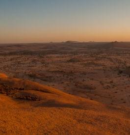 Traverser la Namibie lors d'un roadtrip grandiose