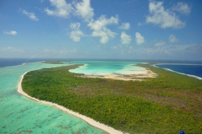Végétation luxuriante à Bora Bora