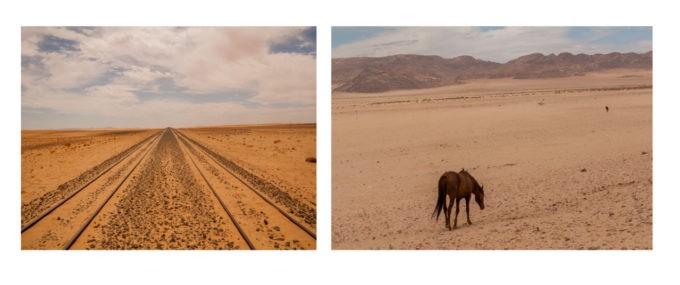La voie ferrée et juste à côté de là, des chevaux sauvages splendides