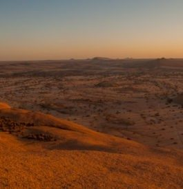Traverser la Namibie lors d'un roadtrip grandiose