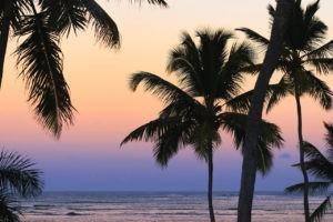 Blog voyage destination