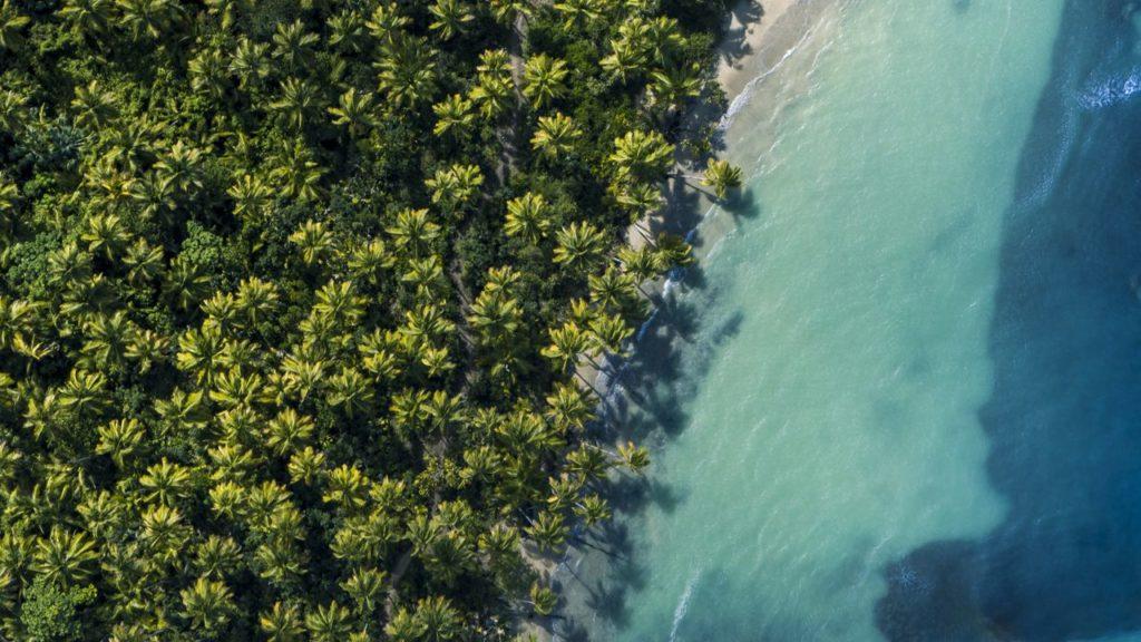Entre végétation et eaux cristallines