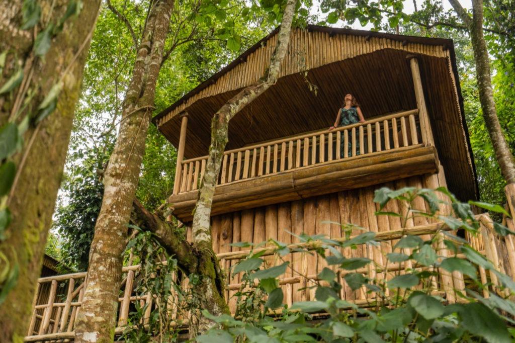 Le Buhoma Lodge, au cœur de la forêt impénétrable en Ouganda