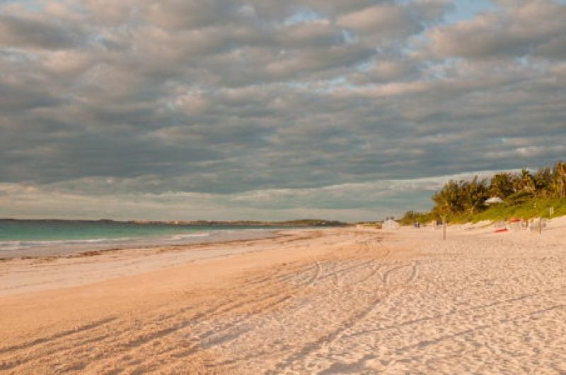 La plage de sable rose de Harbour Island