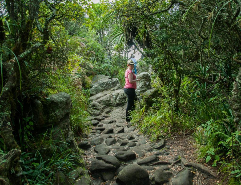 Un peu plus loin, nous empruntons un sentier dans une végétation luxuriante