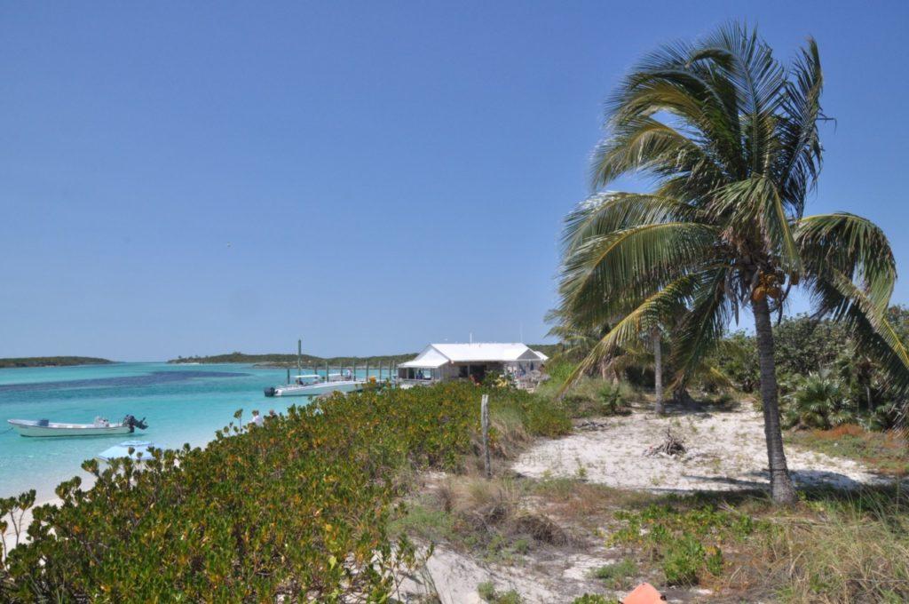 Découvrir les rares endroits d'ombre de l'île