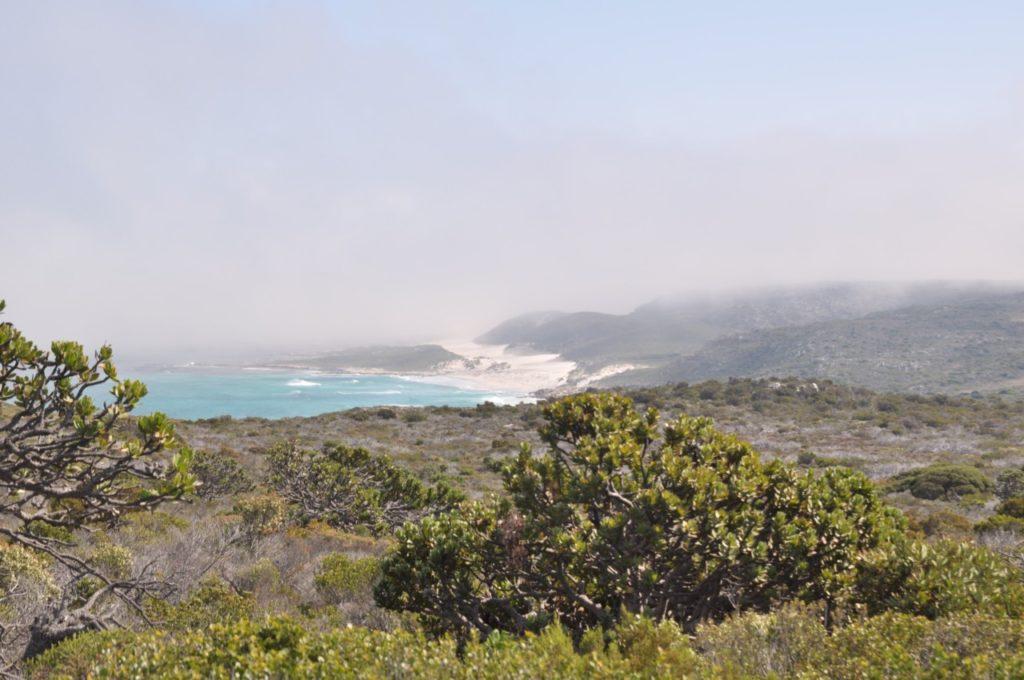 Le lieu est en pleine nature mais attention, il y a souvent un brouillard épais qui se dépose à Cape Town