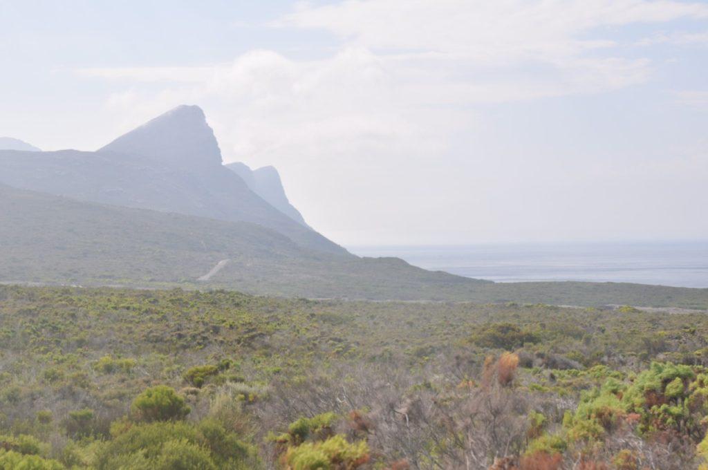 Cape Point vaut le détour