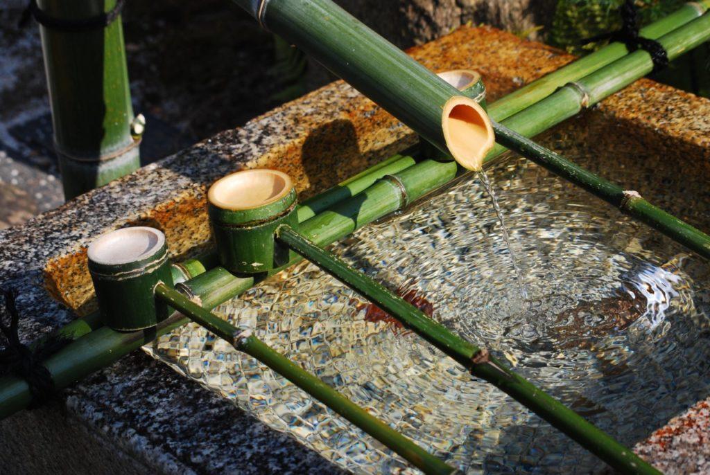 Les bambous et la pureté de l'eau à Arashiyama