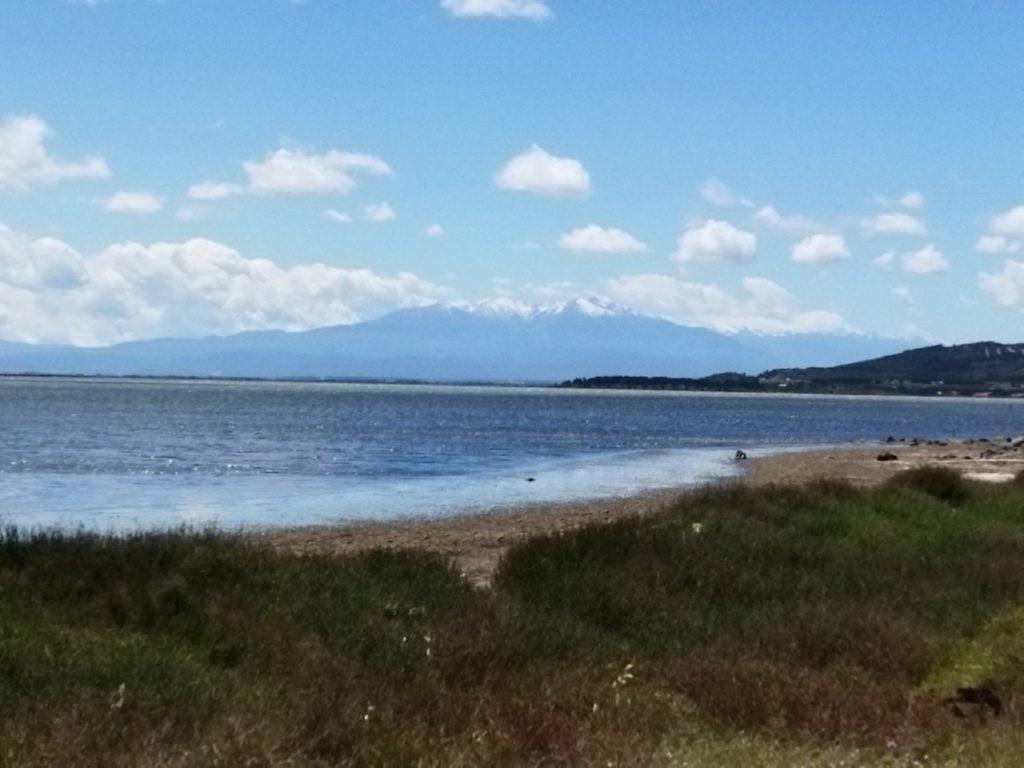 Le Mont Canigou depuis les étangs de Leucate