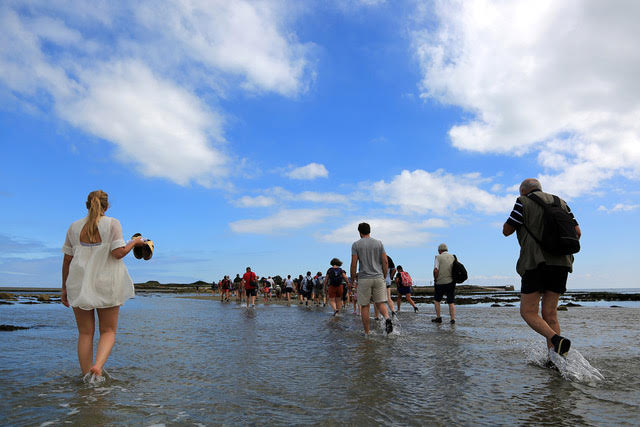 Les festivaliers rejoignent toujours l'île à marée descendante