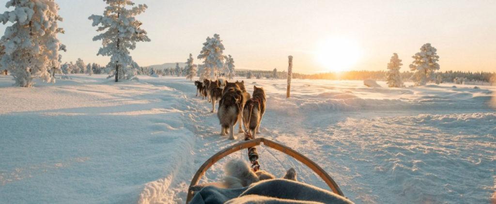 Voyage en Finlande avec Tuomas Paloniemi de Visit Jyväskylä