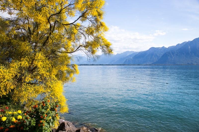 Prendre le temps - Suisse - Lac Leman