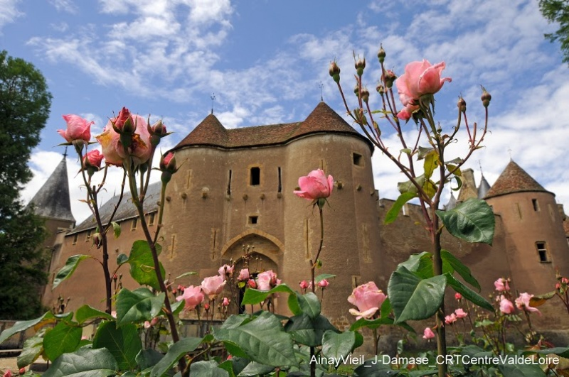 Château Ainay Vieil - jardin de roses