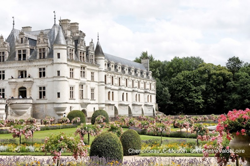 château de Chenonceau - jardin de rose