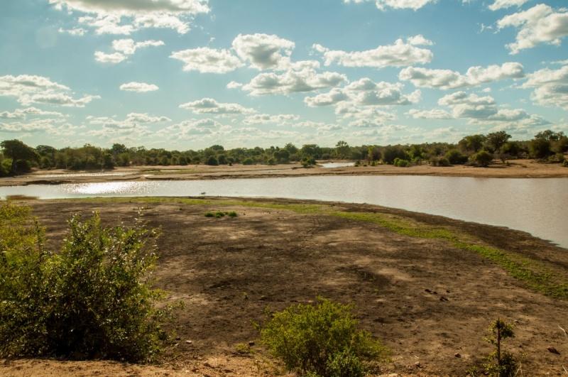 piste de la rivière -éléphants - Parc Kruger - Afrique du Sud