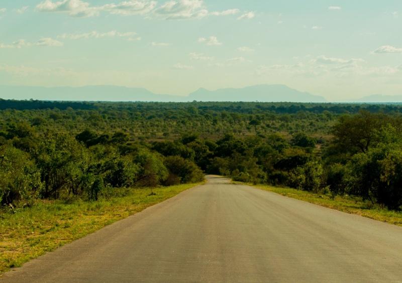 Être sur la route - Parc Kruger -Afrique du Sud