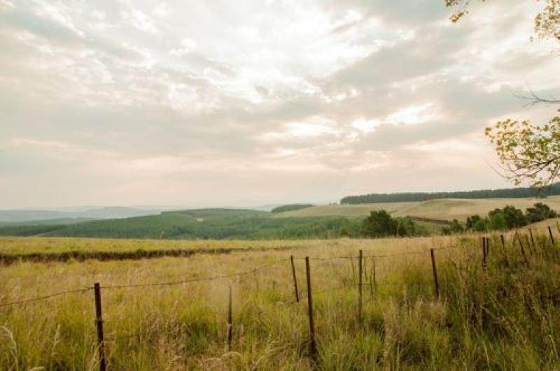 La nature - Drakensberg - Afrique du Sud