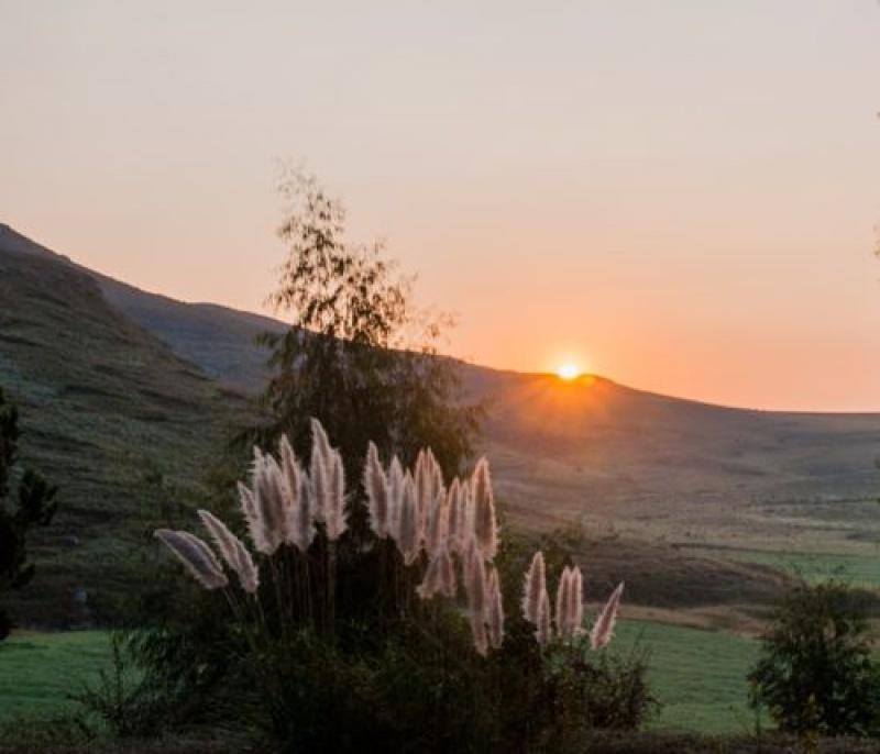 Le jardin- coucher du soleil - auberge de jeunesse